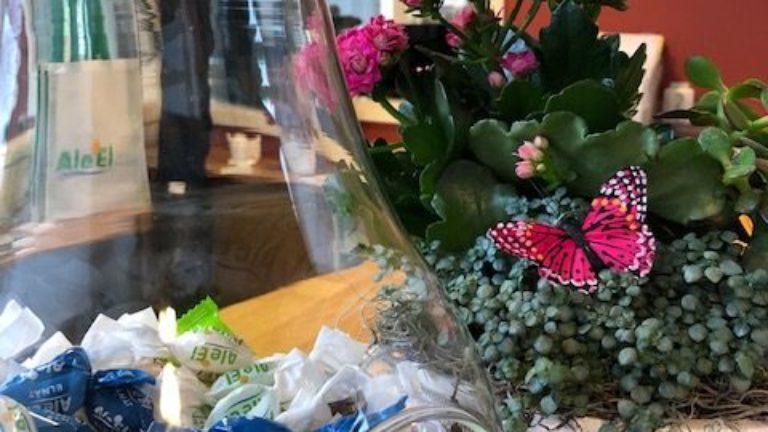 Vinnare – Älvängens Vårmarknad